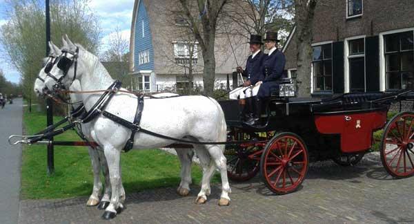 Аренда кареты в Амстердаме