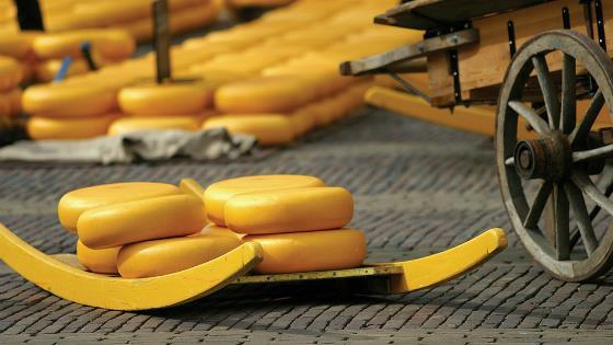 гид Алкмаар сырный рынок