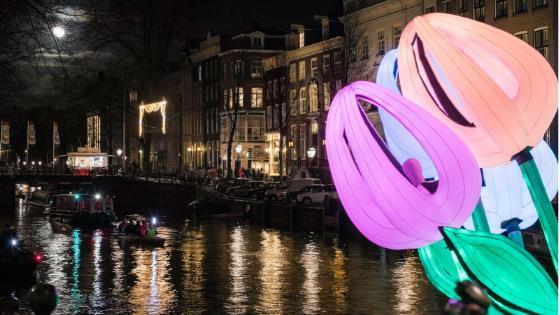 festival-sveta-amsterdam-yanvar