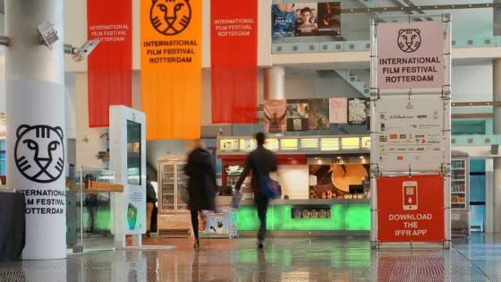 mejdunarodnoe-kino-festival-rotterdam