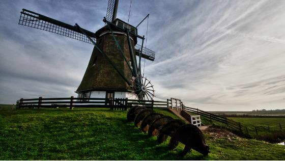 melnisy-gollandiya-amsterdam-holland