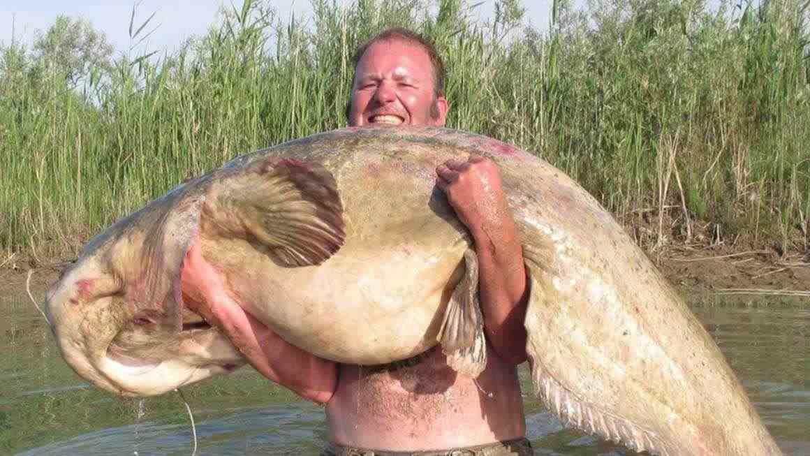 rybalka-v-amsterdame-i-okrestnostyah