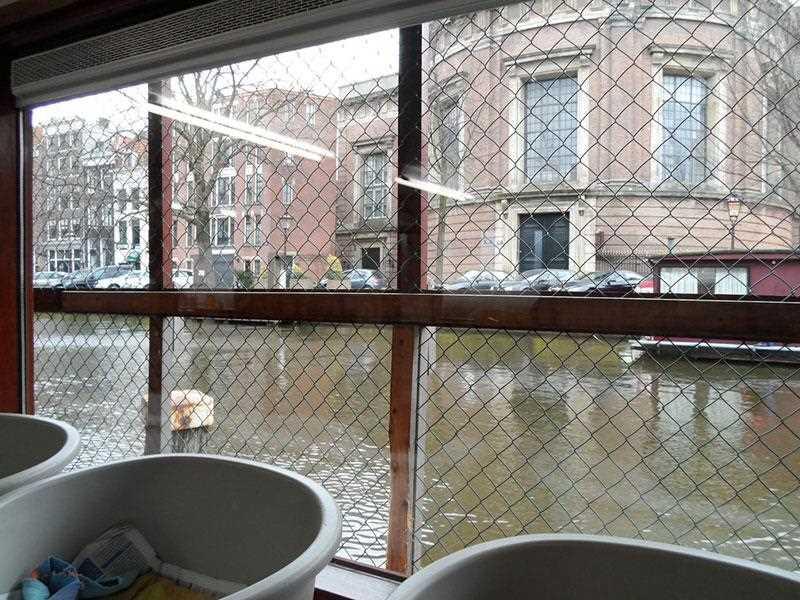 koshki-i-amsterdam