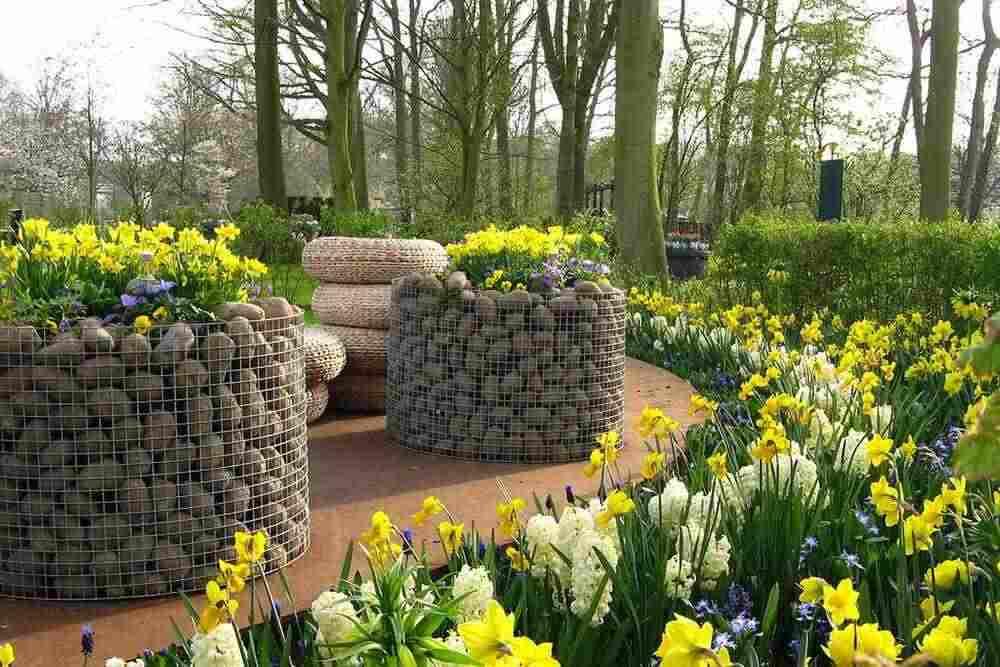 тур Нидерланды ландшафтный дизайн