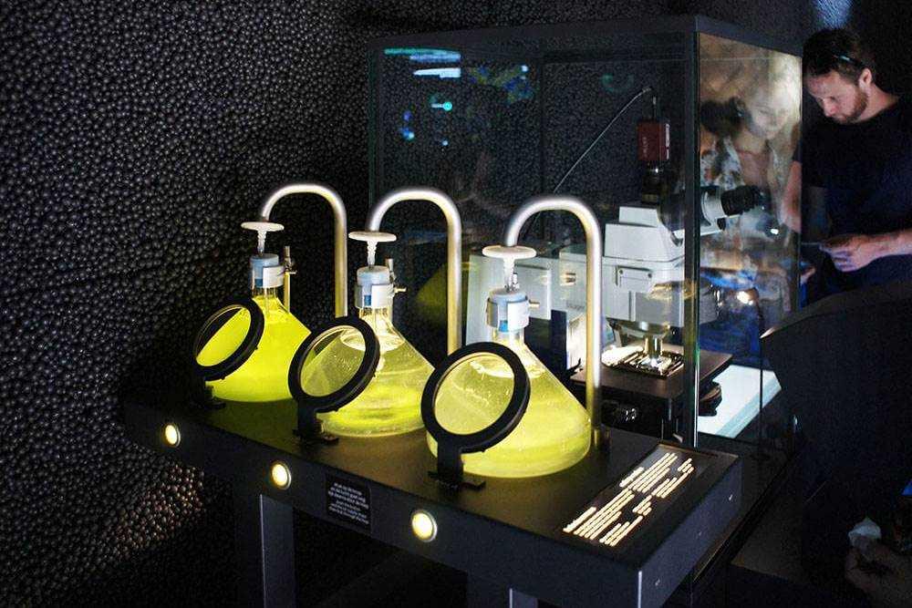 музей микробов Амстердам Микропиа