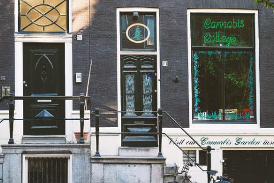 тур кофешопы амстердама