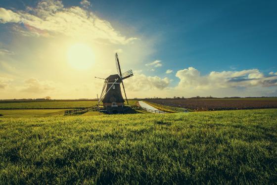 тимбилдинг нидерланды ралли