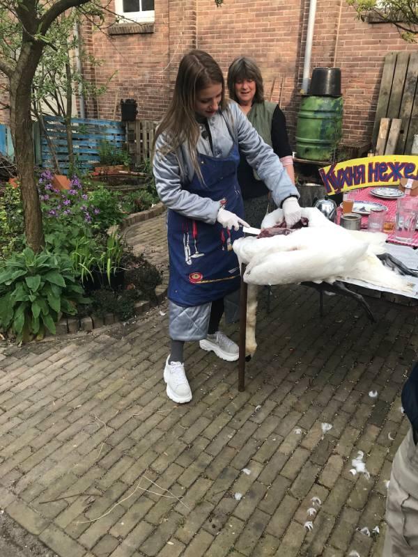 Орел и Решка Амстердам