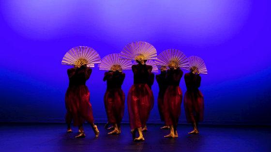 Holland Dance Festival Амстердам