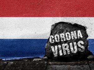 коронавирус голландия