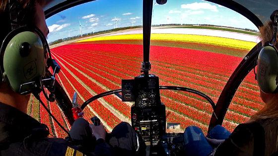 аренда вертолета Нидерланды