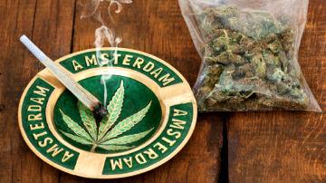 Легализация наркотиков в Нидерландах